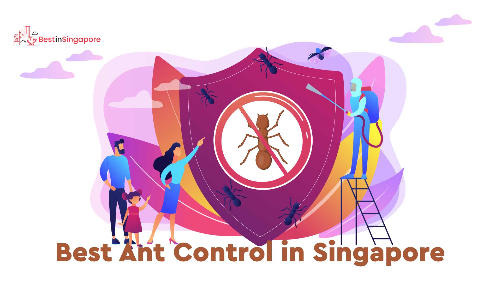 Best Ant Control in Singapore