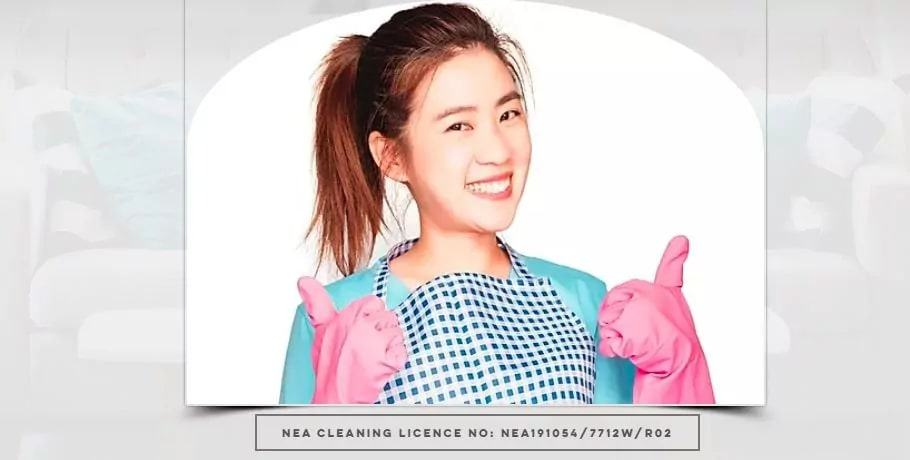 Axgee Cleaning's Homepage