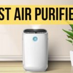 The 12 Best Air Purifiers in Singapore